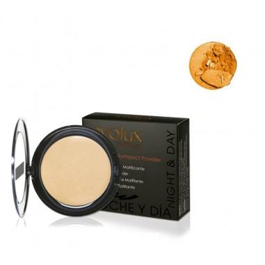 Matifying Compact Powder 48