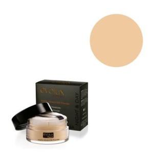 Matte Mineral Silk Powder 53 -Face -Evolux Make Up